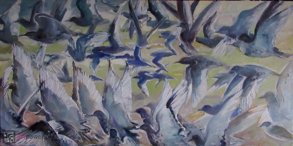 Ptaki startujące