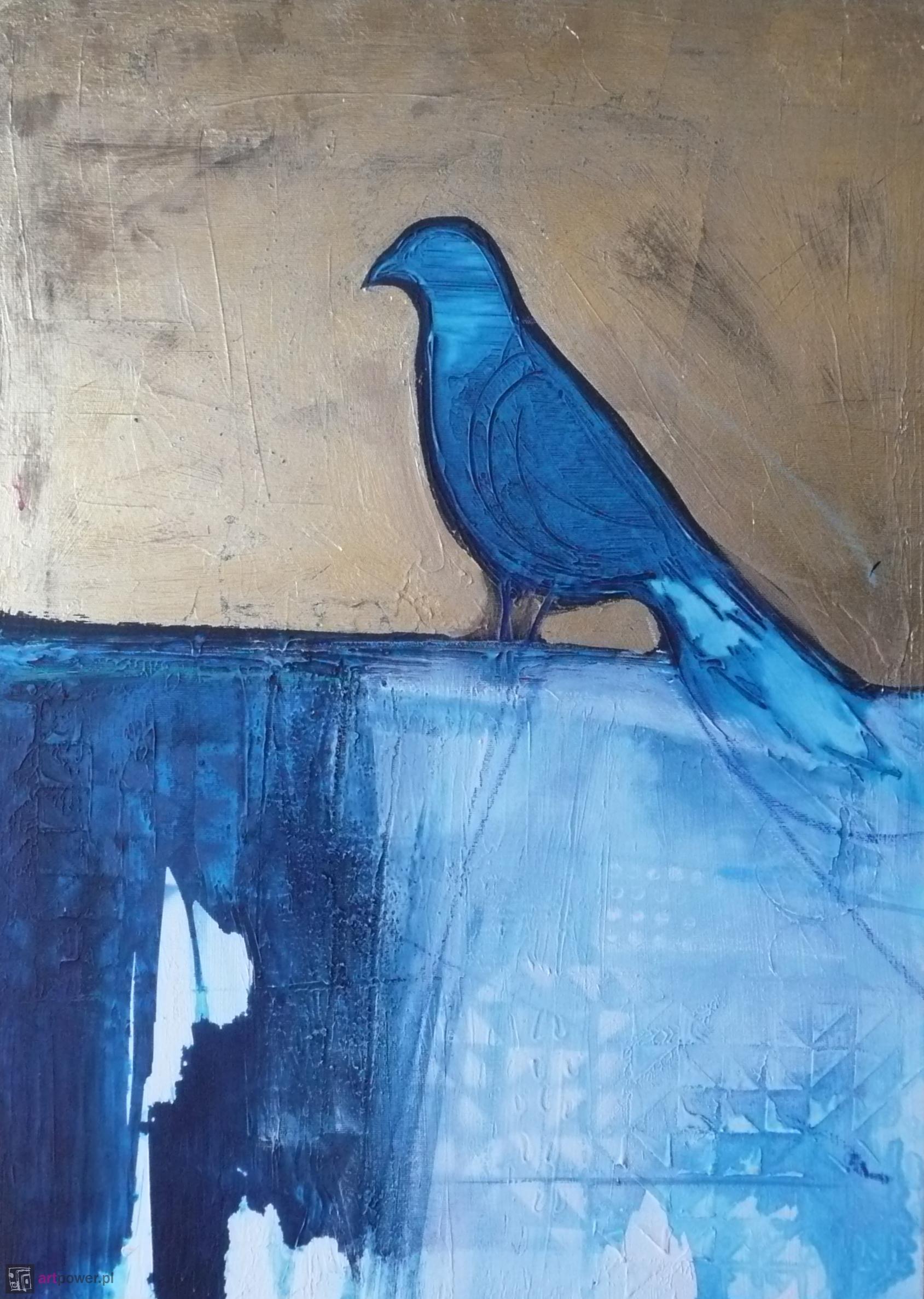 Ptaki 12