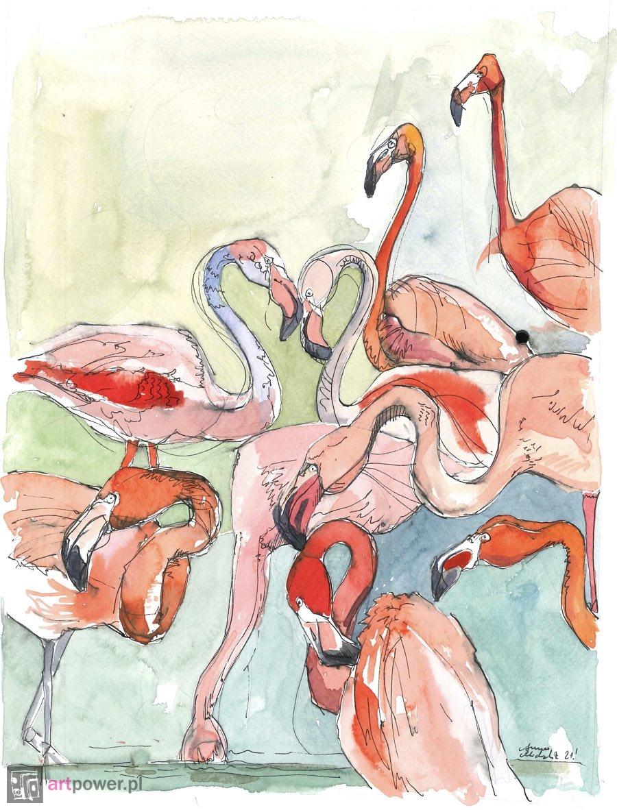 Flamingi II