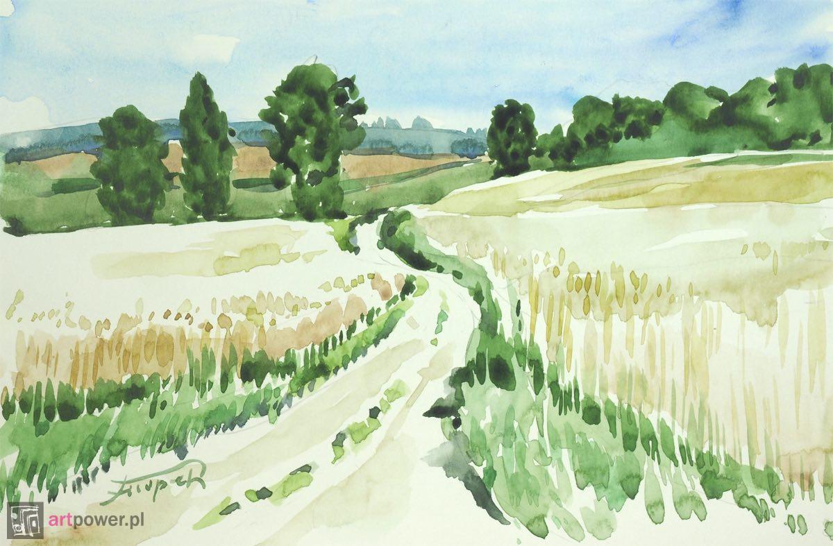 Przez mazowieckie pola